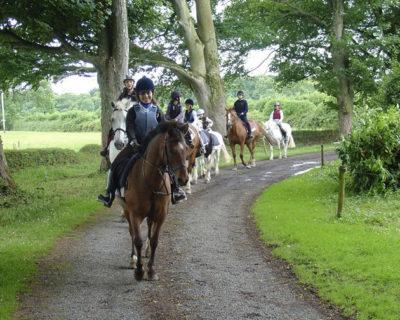 Programme d'anglais et d'équitation en Irlande